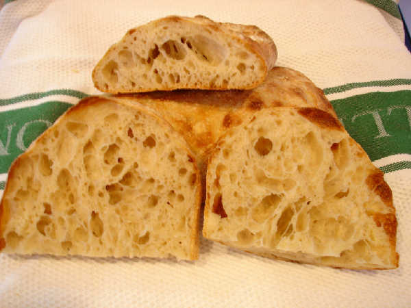 Sourdough Ciabatta Crumb (lengthwise slice)