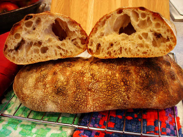 Sourdough Ciabatta - Firm Starter Version (crumb and loaf)