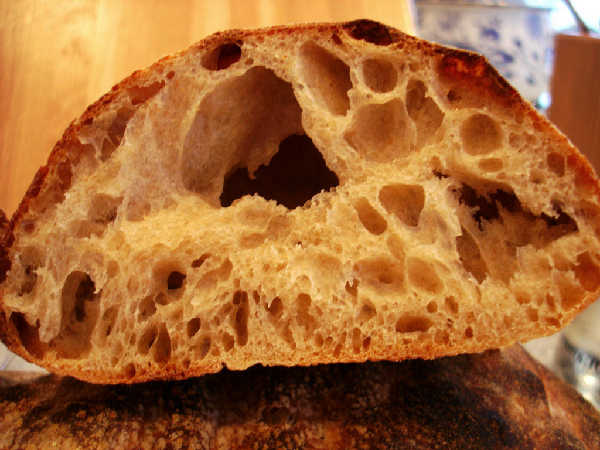 Sourdough Ciabatta - Firm Starter Version (crumb)