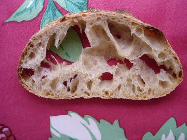 Sourdough Ciabatta - Firm Starter Version (slice)