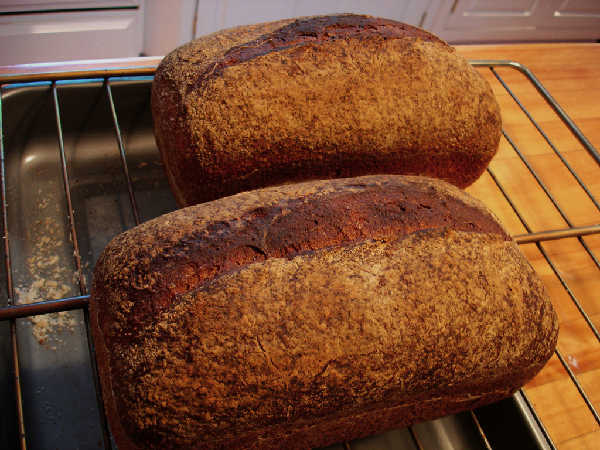 Whole Grain Sourdough Sandwich Bread Loaves
