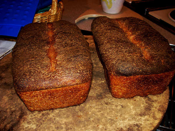 Sourdough Whole Grain Sandwich Loaves