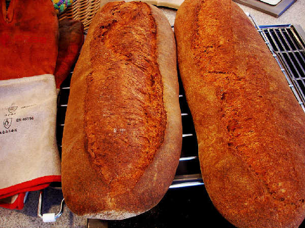 100% Whole Grain Hearth Breads - Crust
